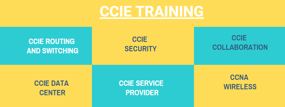 ccie training institute in Bangalore